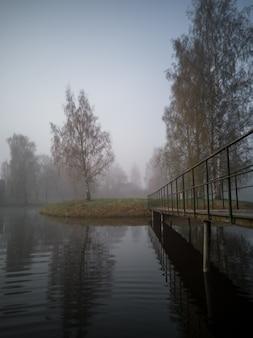 Sagome di alberi in una mattina presto sull'isola nel lago con una fitta nebbia