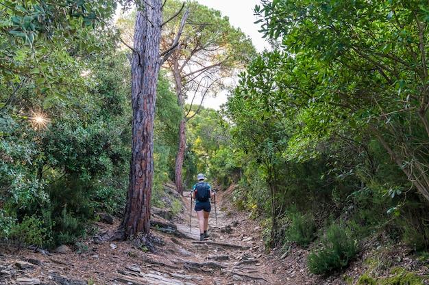 Treekking all'alba lasciando girona con un escursionista in arrivo.