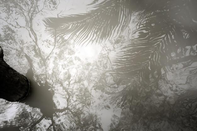 Gli alberi proiettano ombre sfocate sull'acqua liscia increspata. sfondo astratto sfocato.