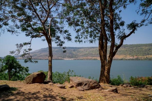 Gli alberi crescono al confine della diga di lamtakong, lago di acqua blu, destinazione di viaggio a nakhon ratchasima, thailandia