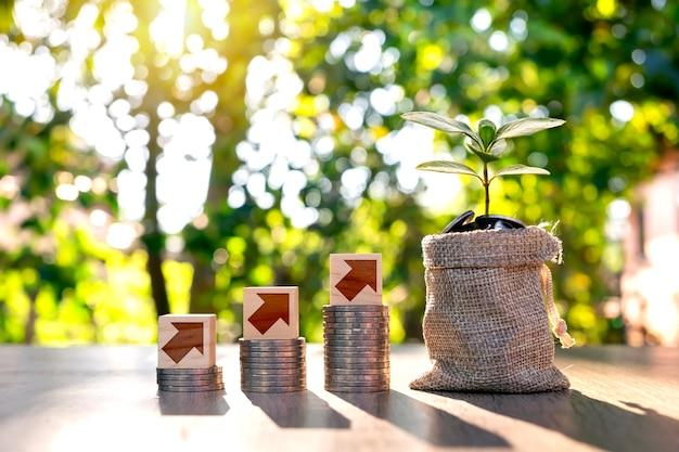 Gli alberi crescono su sacchi di denaro per risparmiare denaro e simboli di crescita su blocchi di legno