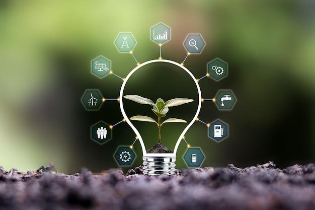 Alberi che crescono sul suolo e icone relative all'energia rispettose dell'ambiente, concetto di giornata della terra e risparmio energetico.