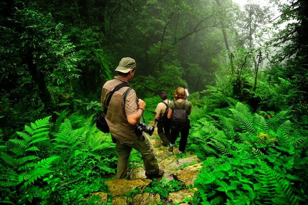 Trekking attraverso il sentiero della giungla in nepaladventure avventuriero asia zaino foresta erba verde h