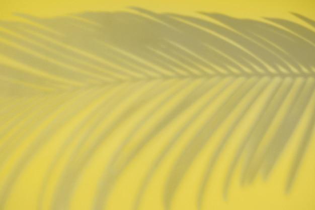 Colori di tendenza del 2021 ultimate grey e illuminating. ombra di foglia di palma. disegno creativo di luci e ombre per il tuo design.