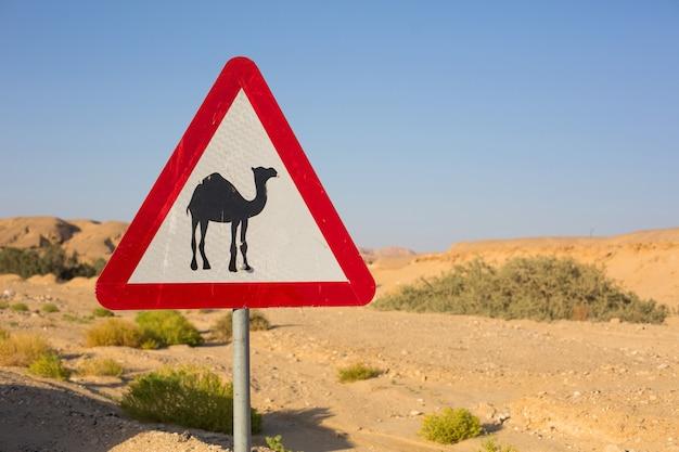 Segno del triangolo vicino alla strada del deserto sulla passeggiata dei cammelli