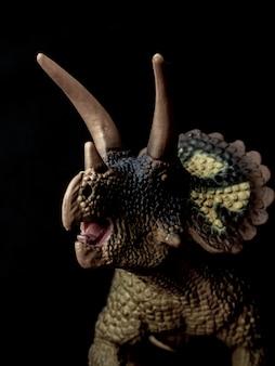 Dinosauro triceratopo su fondo nero