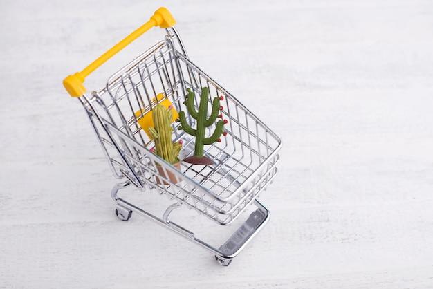 Carrello con cactus fiori giocattolo con copyspace per il testo