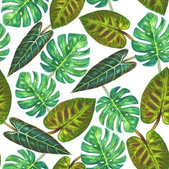 Sfondo tropicale. foglie verdi esotiche tropicali di monstera e filodendro su sfondo bianco. illustrazione disegnata a mano dell'acquerello. modello senza cuciture per avvolgimento, carta da parati, tessuto, tessuto.