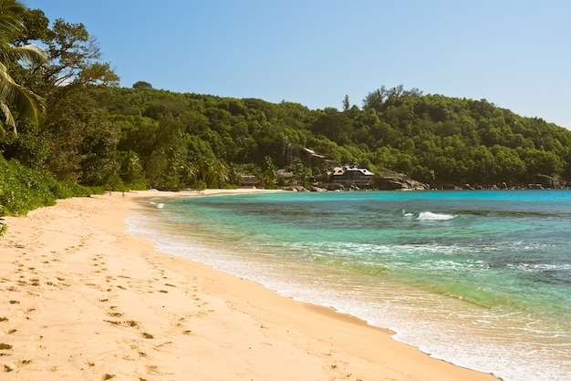 Spiaggia tropicale all'isola seychelles di mahe