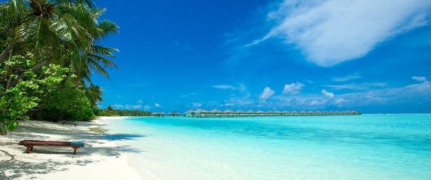 Spiaggia tropicale alle maldive con poche palme