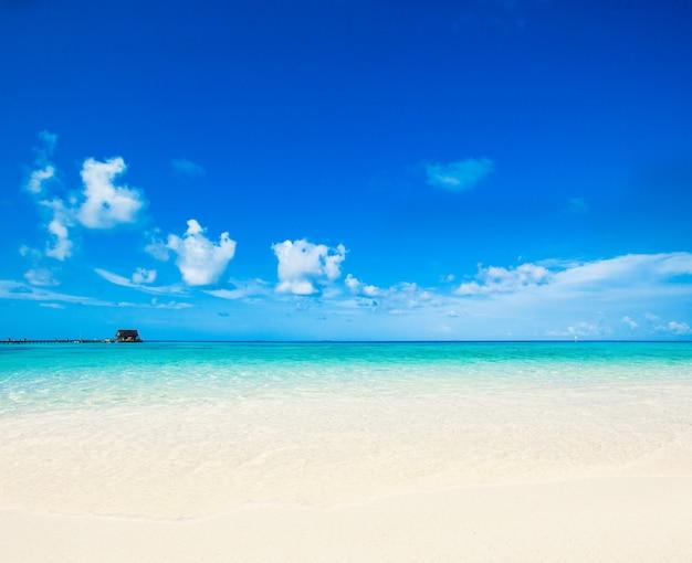 Spiaggia tropicale alle maldive
