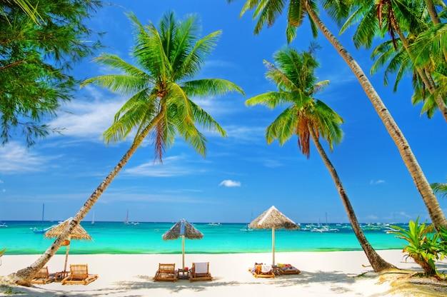 Scenario di spiaggia tropicale con palme da cocco e mare turchese. isola di boracay, filippine