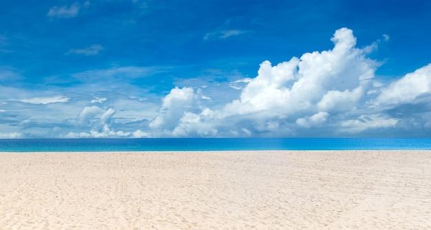 Spiaggia tropicale in sri lanka. paesaggio marino