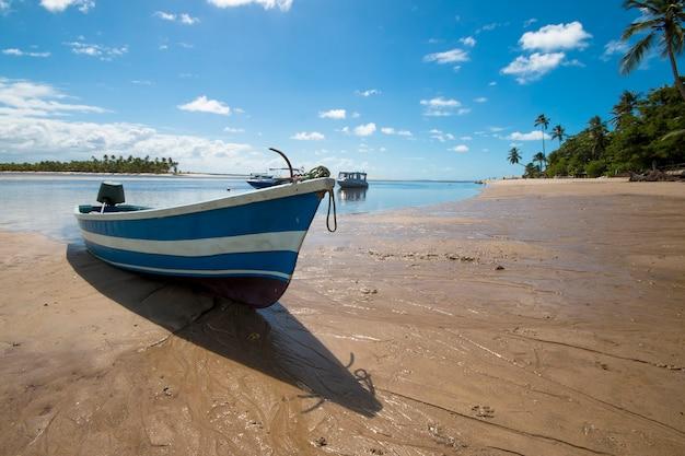 Spiaggia tropicale con palme da cocco e barche sull'isola di boipeba a bahia brasile.