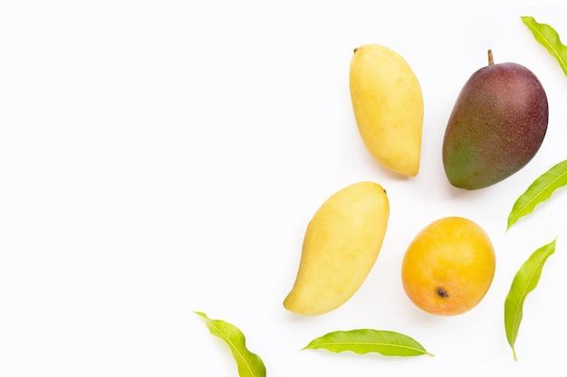 Frutta tropicale, mango su sfondo bianco. vista dall'alto