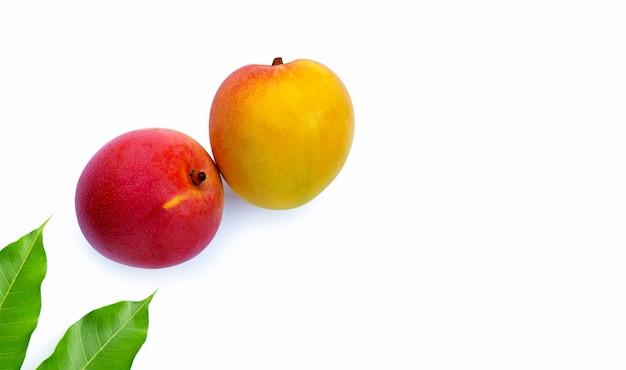 Frutta tropicale, mango su sfondo bianco.
