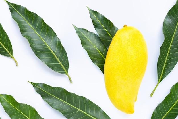 Frutta tropicale, mango con foglie. vista dall'alto