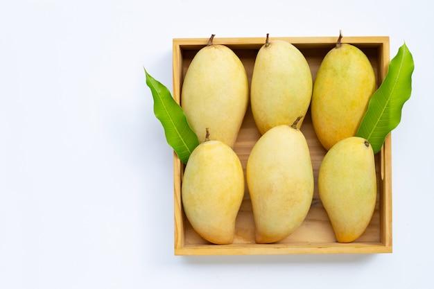 Frutta tropicale, mango in scatola di legno su fondo bianco.