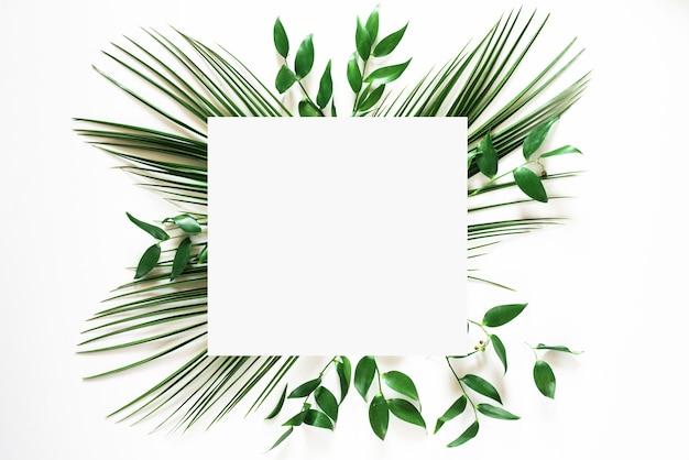 Cornice foglia verde tropicale su bianco