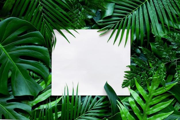 Foglia verde tropicale con carta bianca nota sullo sfondo della natura