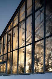 Serra tropicale nel tempo di gelo invernale al giorno pieno di sole. giardino interno.