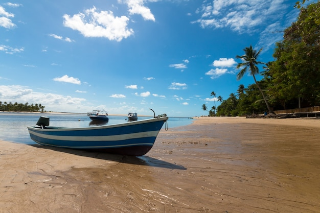 Paesaggio tropicale con spiaggia con barche sull'isola di boipeba bahia brasile.