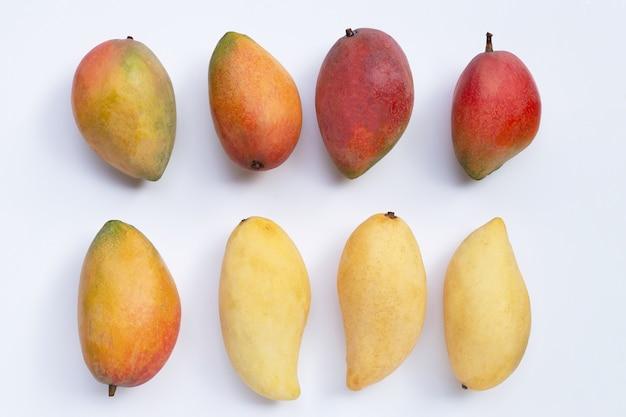 Manghi tropicali sulla superficie bianca