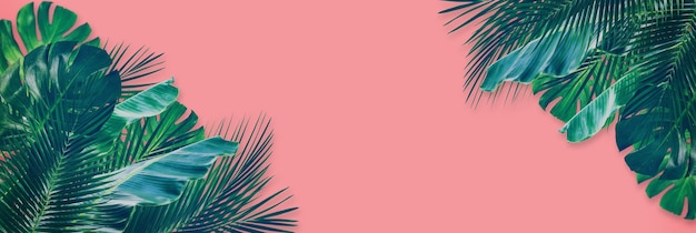 Foglia verde mista tropicale su sfondo di carta rosa. vista dall'alto piatto con copia spazio per il testo.