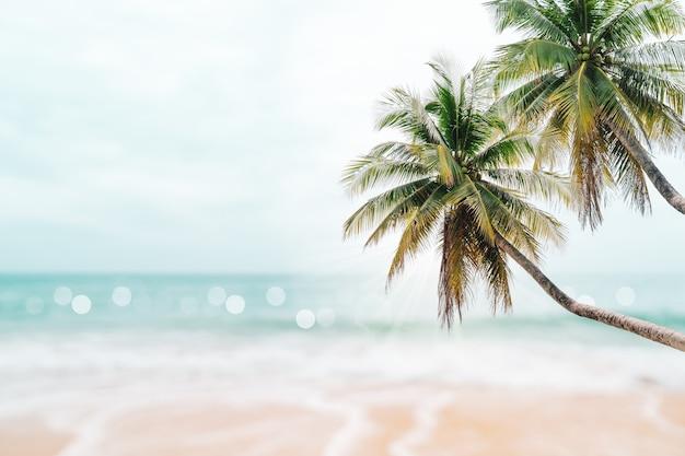 Natura tropicale spiaggia pulita e sabbia bianca in estate con cielo azzurro sole e sfondo bokeh di fondo.