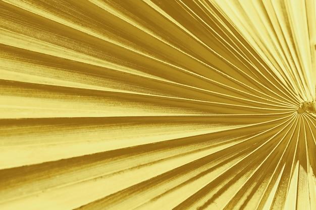 La trama della foglia di palma tropicale è sfondo astratto, colore oro