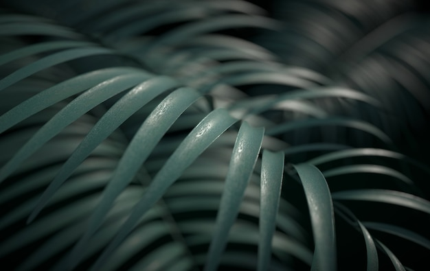 Sfondo di foglie di palma tropicale