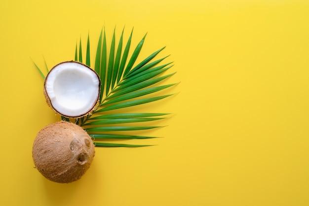 Foglie di palma tropicali e cocco rotto su sfondo giallo