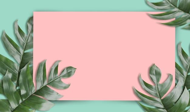 Foglie di palma tropicale con carta vuota per il tuo design natura minima. estate stilizzata. piano lay, dimensioni originali 6480 x 3780 pixel