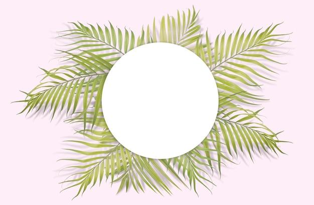 Foglie di palma tropicale con carta bianca su sfondo rosa. natura minima. estate stilizzata. pianta piatta