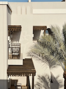 Palma tropicale con foglie verdi lussureggianti vicino a un bellissimo edificio beige