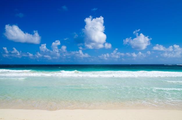 Mare tropicale sotto il cielo azzurro