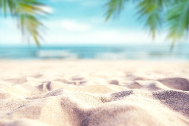 Spiaggia di sabbia e palma di estate tropicale sul fondo del cielo del mare