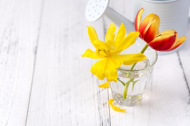 Composizione di fiori di tulipano in vaso di vetro con saluto di cuore, annaffiatoio decorazione su parete di fondo del tavolo in legno, primo piano, concetto di design per la festa della mamma.