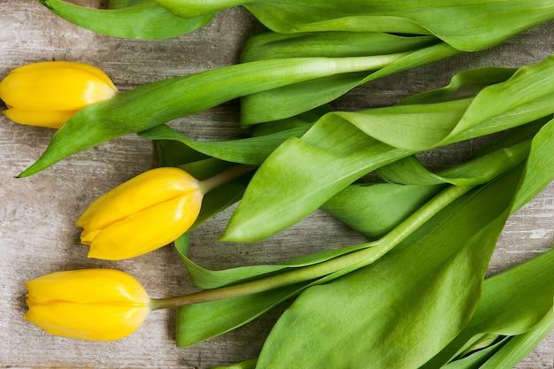 Fiori gialli del tulipano su fondo di legno grigio. design primaverile per pasqua, 8 marzo, festa della mamma