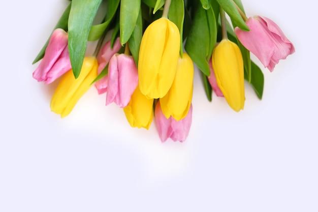Primo piano dei tulipani su una superficie bianca