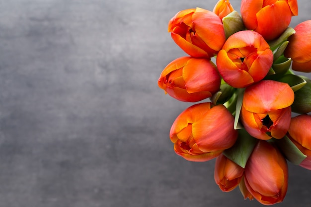 Tulipani, arancio sul grigio