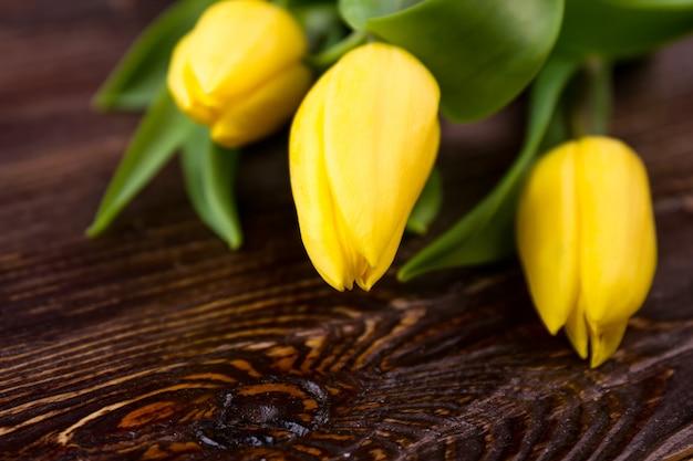 Tulipani su superficie in legno. fiori gialli su legno. regali di primavera dalla natura. consigli sul giardinaggio.