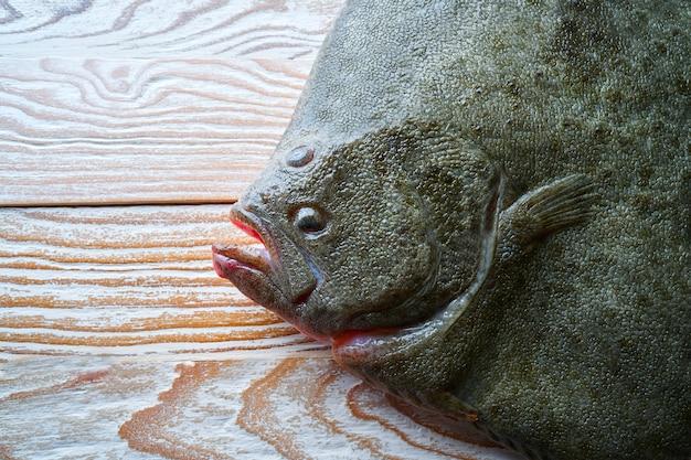 Vista laterale del pesce del rombo su legno bianco