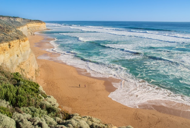 Dodici apostoli spiaggia e scogli in australia, victoria, bellissimo paesaggio della costa oceanica