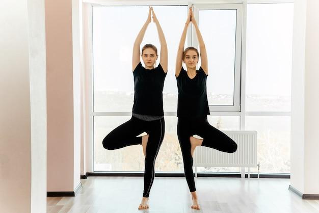 Due ragazze attraenti che praticano il concetto di yoga, in piedi nell'esercizio vrksasana, posa dell'albero