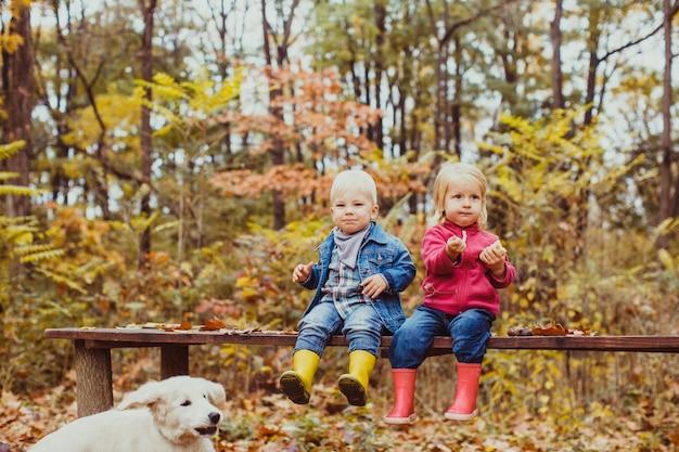 Due bellissimi bambini seduti sulla panchina nel parco autunnale e che danno da mangiare al cagnolino