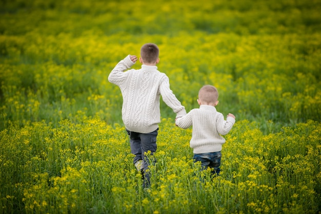 Due fratelli si tengono per mano e camminano in un campo giallo in fiore.