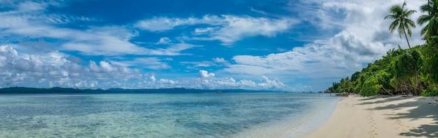 Due palme da cocco vicino alla stazione di immersione sull'isola di kri, raja ampat, indonesia, papua occidentale.