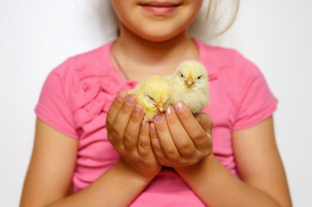 Due simpatici pulcini giallo neonato minuscolo nelle mani della ragazza del bambino