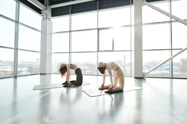 Due giovani femmine in forma in abiti sportivi in piedi sulle ginocchia e piegarsi all'indietro mentre praticano yoga su stuoie